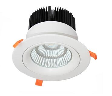 LED Downlight Tiltable 50W COB